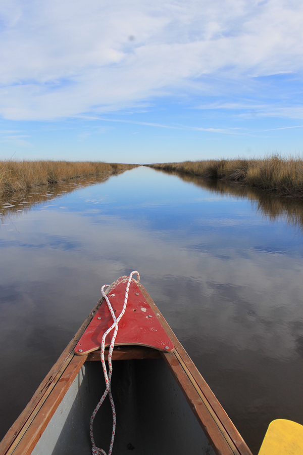 Deer Island Paddle on the Gulf Coat of Mississippi    Photo submitted by Ceci Snyder