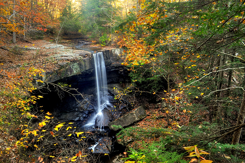 Savage Gulf State Natural Area, Laurel Falls, Beersheba Springs, Tennessee    Photograph submitted by Lori Kay Walden