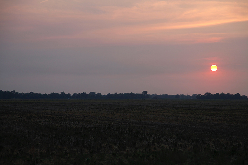 Sunset over the Delta near Clarksdale, Mississippi    Photograph submitted by Greg McWilliams